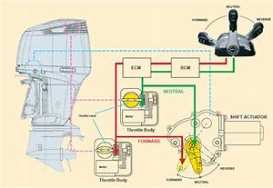 Suzuki Outboard Wiring Diagram  Motorcycle Wiring Diagrams