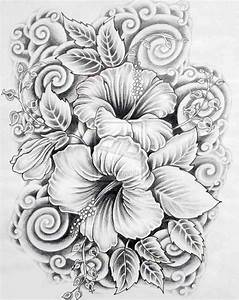Flower Drawings Pencil Beautiful Pic Beautiful Flower ...