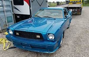 Low Reserve: 1978 Ford Mustang King Cobra