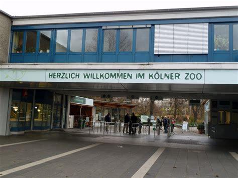 groupon kölner zoo k 246 lner zoo highlights tipps zum besuch im zoo tierpark