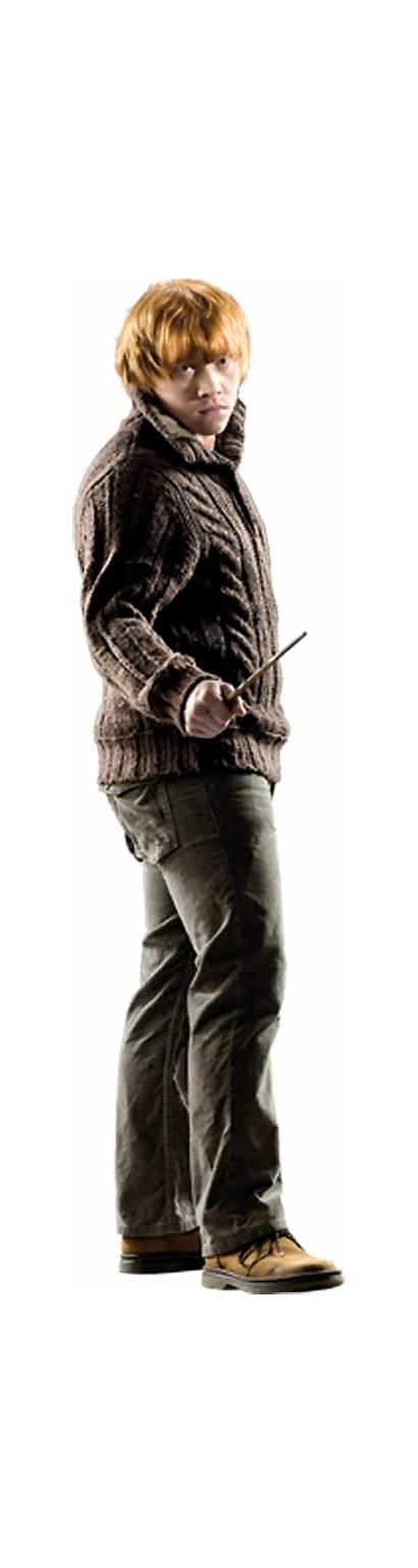 Weasley Ron Harry Potter Ronald Hogwarts Harrypotter