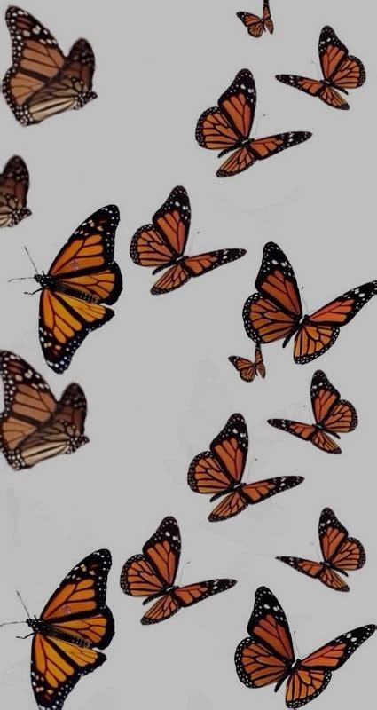aesthetic vsco butterfly background