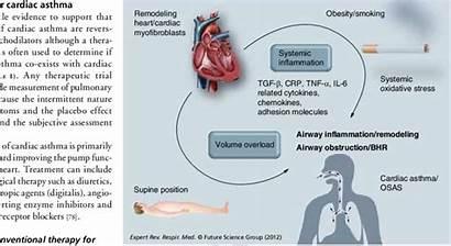 Failure Heart Congestive Volume Obstruction Overload Airway