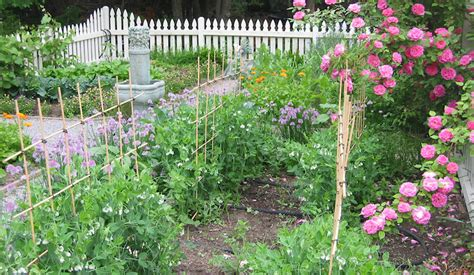 Five Tips To An Ecofriendly Garden  Coldwell Banker Blue