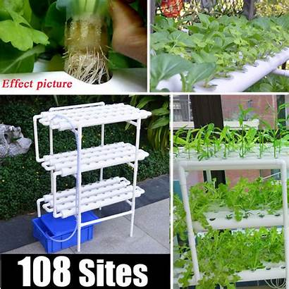 Hydroponic Water System Garden Grow Kit Vegetable