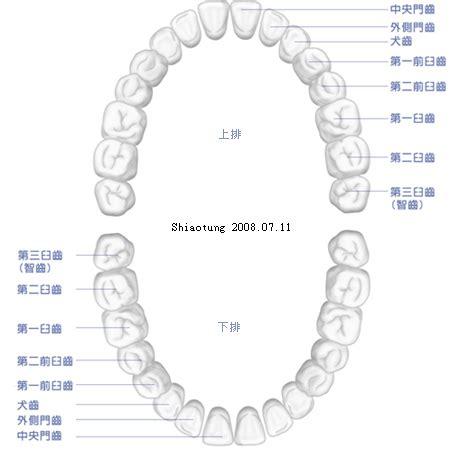 5 x 5 photo album 靚靚牙牙紀錄 牙齒排列 靚靚 gigi i的相簿 痞客邦 pixnet