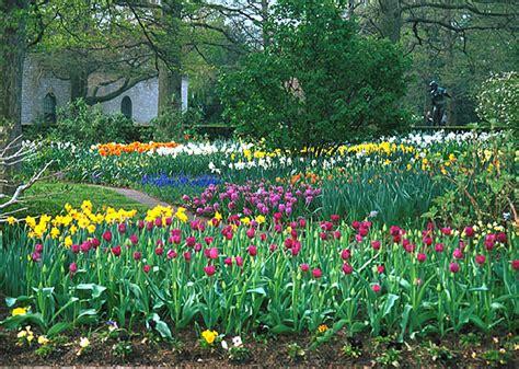 bulb gardens mbg plant collection gardens tour
