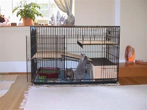 How To Build & Make An Indoor Rabbit Hutch Or Bunny Cage