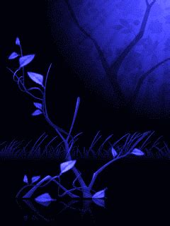 Animated Wallpaper For Mobile 240x320 - stunning animated wallpapers 240x320 mobile wallpaper