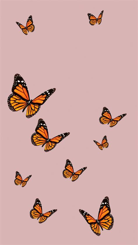 aesthetic simple butterfly wallpapers