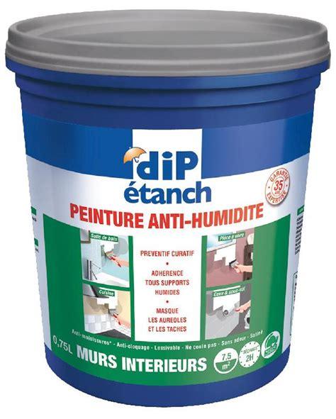 revger traitement anti humidit 233 mur interieur id 233 e