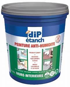 Anti Humidité Mur : traitement anti humidit mur interieur id e ~ Edinachiropracticcenter.com Idées de Décoration