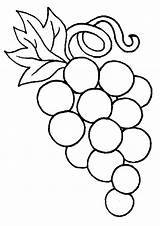 Coloring Pages Grapes Grape Template Para sketch template