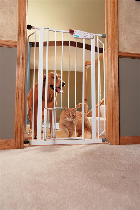 Carlson Pet Products Extra Tall Walk-Thru Gate