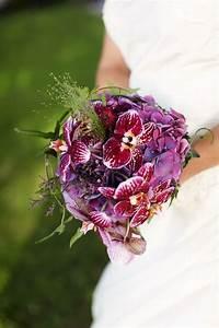 Orchidee Klebrige Tropfen : die besten 25 lila orchideen bouquet ideen auf pinterest ~ Lizthompson.info Haus und Dekorationen