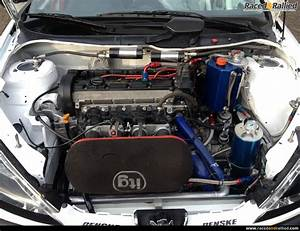 Peugeot 206 Race car,Rally,Sprint/hillclimb, Track 274 BHP ...