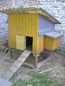 Nid Pour Poulailler : pin poule avec un nid coloriage sur animaux on pinterest ~ Premium-room.com Idées de Décoration