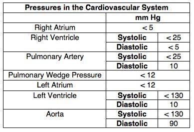 Normal Pressures - Cardiovascular - Medbullets Step 1