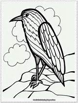 Cockatiel bird coloring pages