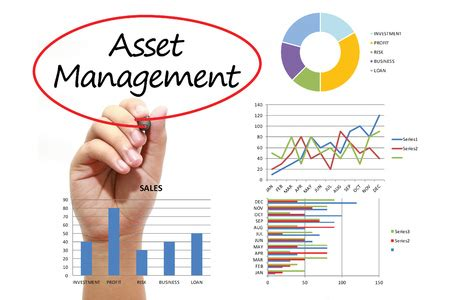 Asset Management Firms  Tampa  St Petersburg. Quickbooks Phone Number Lyoness Cashback Card. Diabetes And Weight Loss Surgery. How To Say Years In Spanish Mn Custody Laws. Neil Fiore The Now Habit Artistas Pop Latino. Double Barrel Pump Action Shotgun. Best Automotive Engineering Schools. A Aaccess Online Payment Systems. Corporate Event Planning Atlanta