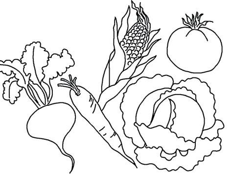 fruits  vegetables drawing  getdrawings