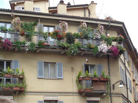 terrazzo e balcone fiori e piante per balconi e terrazzi a fiorilandia