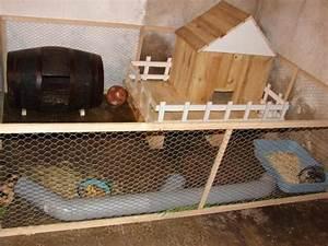 Comment Construire Une Cabane à écureuil : comment construire une cabane a cochon d 39 inde la r ponse est sur ~ Melissatoandfro.com Idées de Décoration