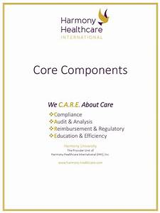 Skilled Nursing Documentation Guide Pdf
