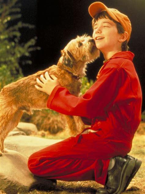 boy 2003 allmovie movie goodboy hoffman john related soap