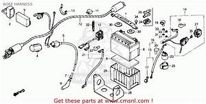 Honda Tr200 Fatcat 1986  G  Usa Wire Harness