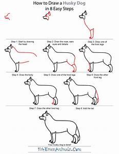 How To Draw A Husky Dog