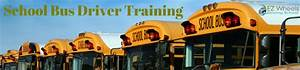School Bus Driver Training  Requirement  U0026 Classes For New