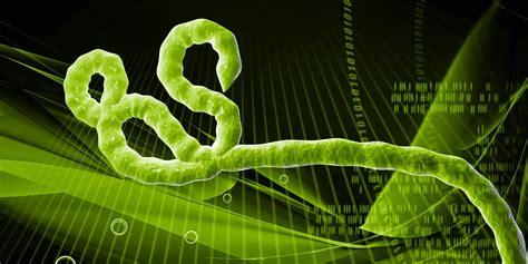 ebola virus hd wallpapers hd wallpapers