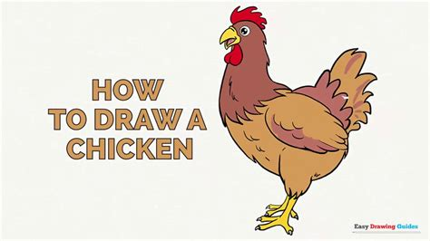 draw  chicken    easy steps drawing
