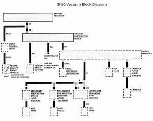 1999 Cobra Engine Compartment Vacuum Diagrams : 94 95 mustang 5 0 vacuum diagram ~ A.2002-acura-tl-radio.info Haus und Dekorationen