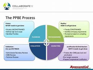 Portfolio Management And The Ppbe Process At The