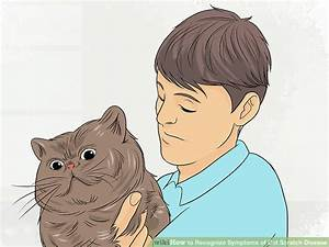 How To Recognize Symptoms Of Cat Scratch Disease  With