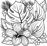 Tropical Coloring Pages Flower Getdrawings sketch template
