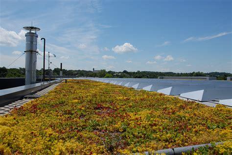 apex green roofs  greenroofscom