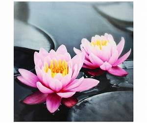 Cadre En Toile : tableau toile cadre zen lotus fleur rose n nuphar galets noir 28x28cm 4994 ~ Teatrodelosmanantiales.com Idées de Décoration