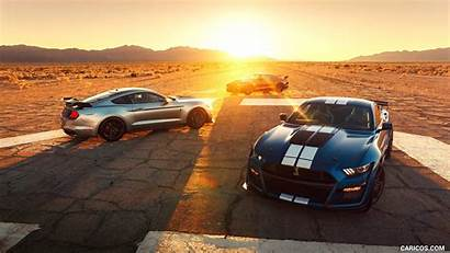 Mustang Gt500 Shelby Ford Cars Caricos