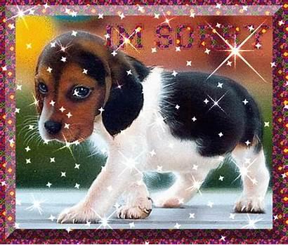 Sorry Puppy Am Im Glitter Gifs Graphics