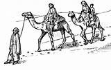 Camel Coloring Caravan Bestofcoloring Drawings 657px 4kb 1024 Pdf sketch template