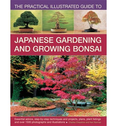 Japanische Gärten Charles Chesshire by The Practical Illustrated Guide To Japanese Gardening And