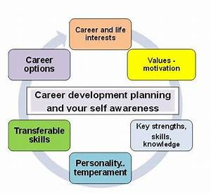 five year career development plan template - career development planning the secret formula to choose