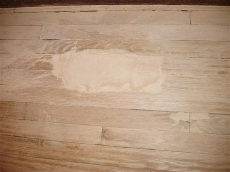 How to Patch Hardwood Floors   Wood Floor Patch MN