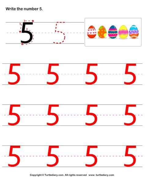 learn to write number five worksheet turtle diary