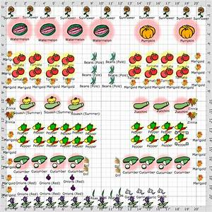 A Diva U0026 39 S Garden  2012 Vegetable Garden Plan