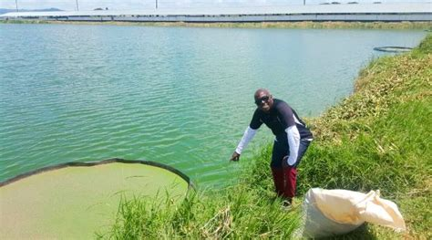 kafue fisheries showcases  real benefits  integrated
