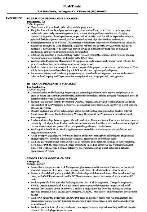 Program Manager Resume Sle by Senior Programme Manager Resume Sles Velvet